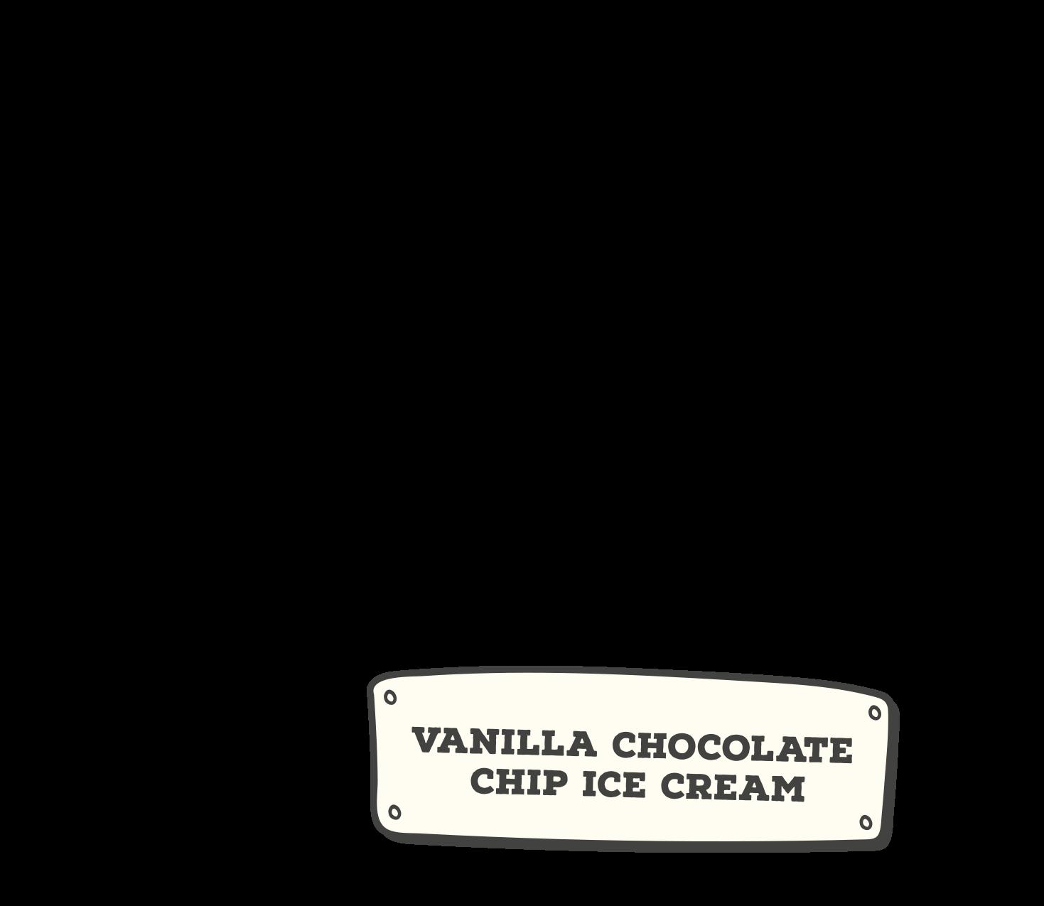 vanilla chocolate chip ice cream